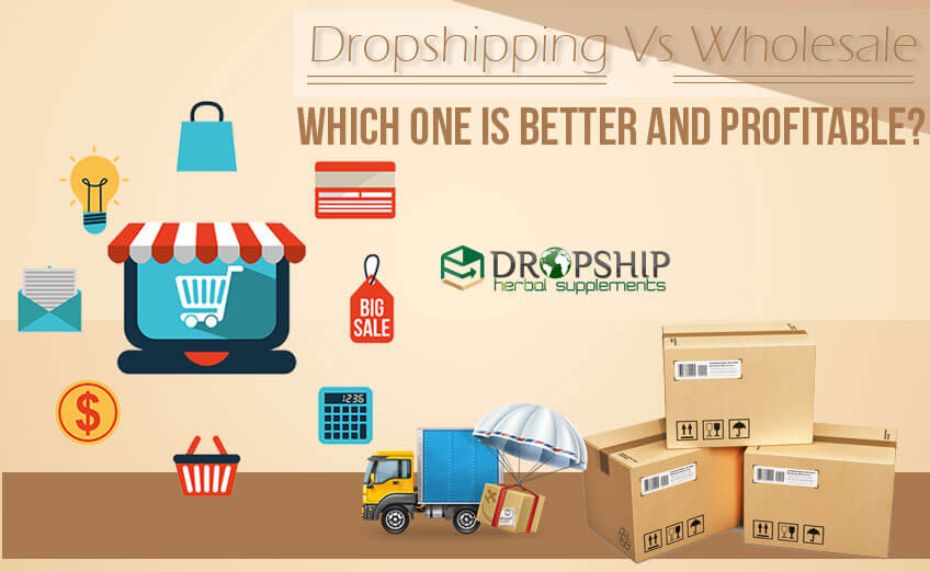 Dropshipping Vs Wholesale