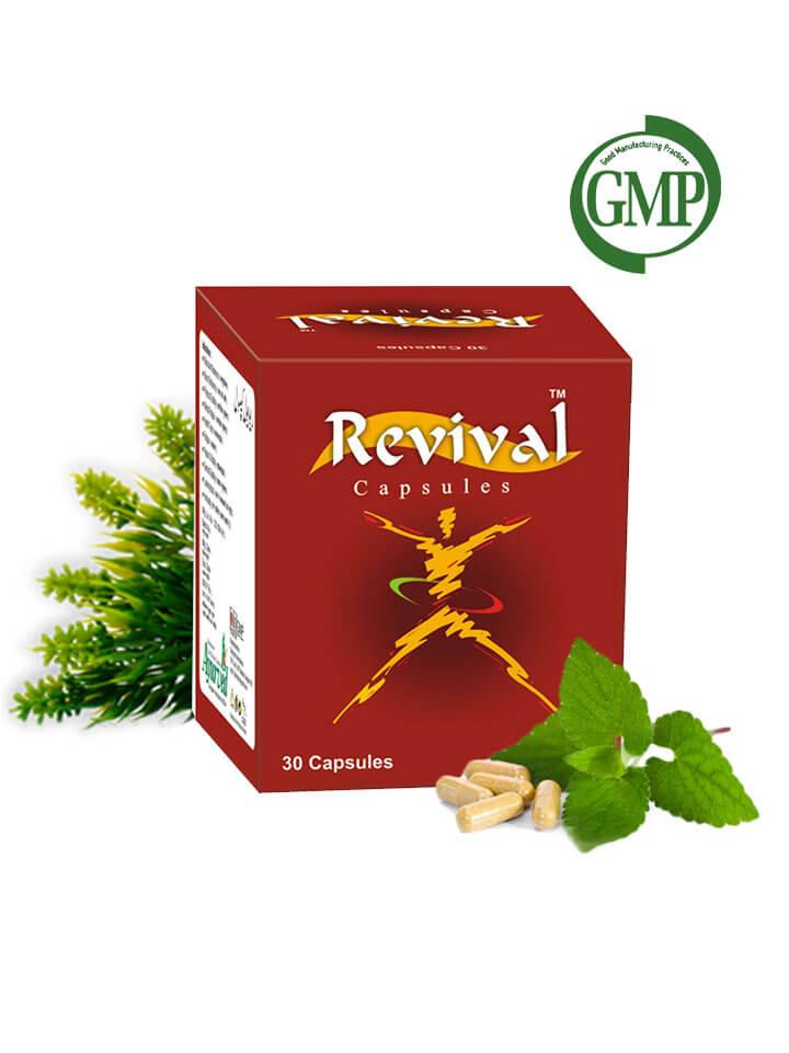 Herbal Energy Supplements