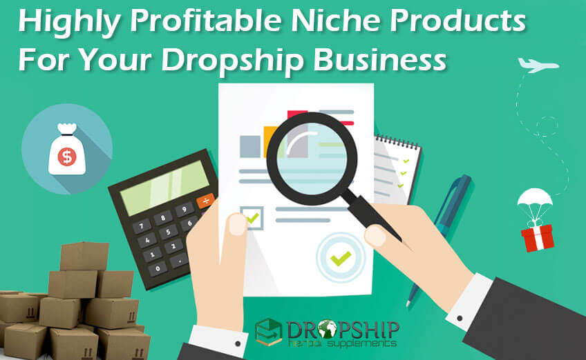 Niche Products For Dropship Business