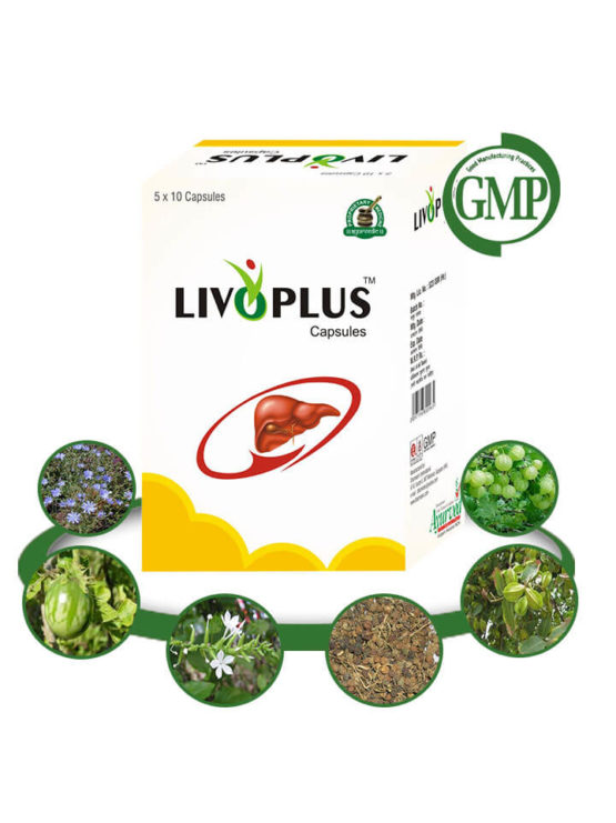 Natural Liver Support Supplements