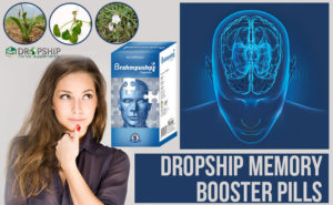 Dropship Memory Booster Pills